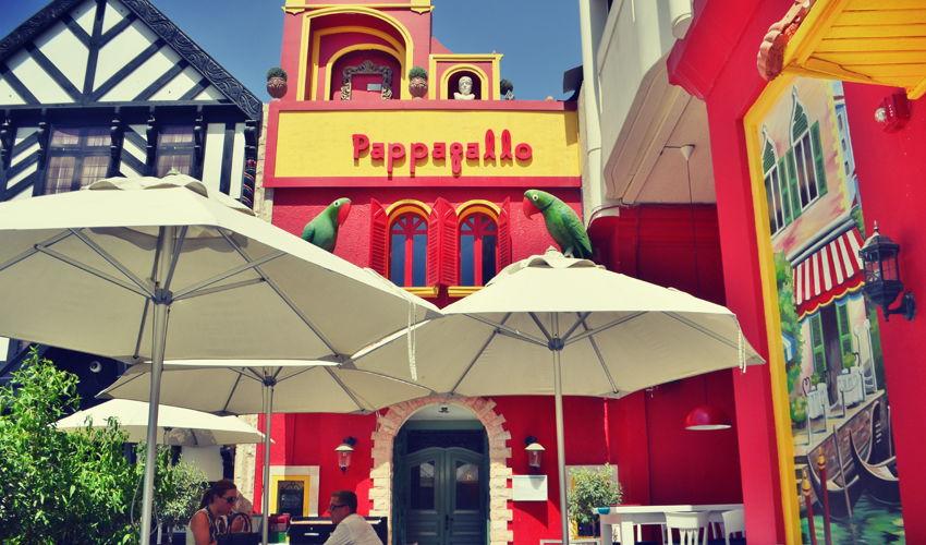 صورة Pappagallo