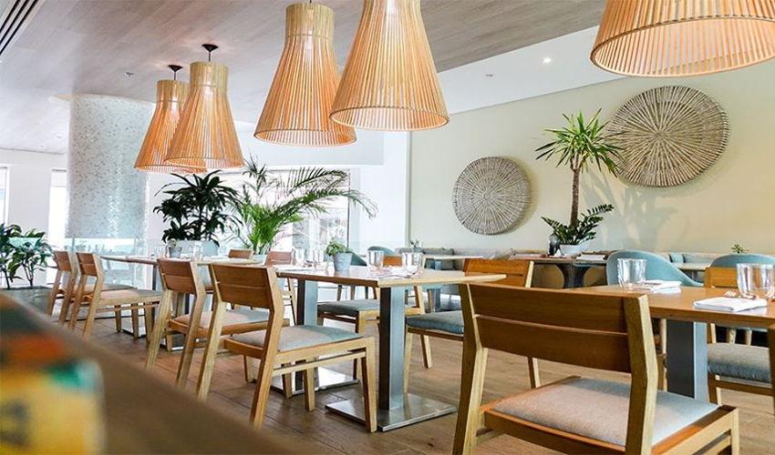 Plant Cafe Restaurant image