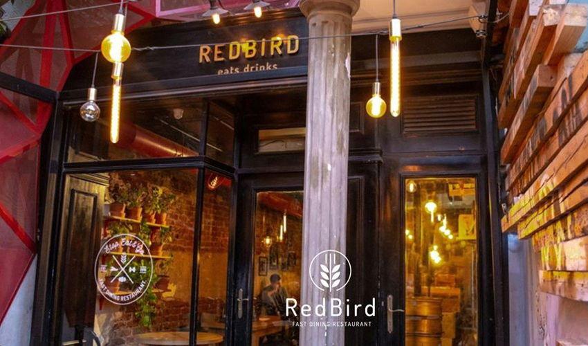 Red Bird image