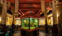 Shogun Restaurant image