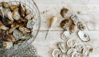 صورة Blu Point Seafood Co